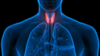 diagnostyka chorób tarczycy