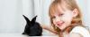 testy alergiczne na królika